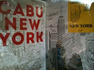 New York 013