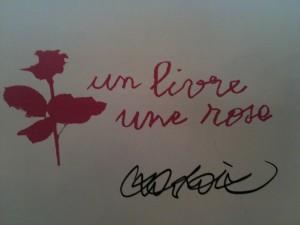 fete rose 006
